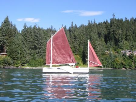 SELKIE with tanbark sails