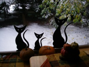 """The cat silhouettes, taken on last year's """"white Halloween."""" The pumpkin on the right is one from our garden."""