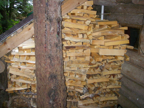 homestead's firewood stack, rear view