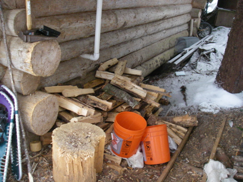 the woodpile in March