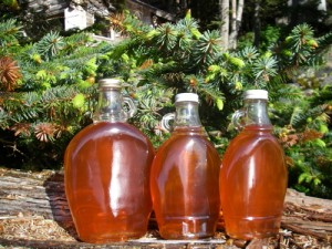 Last year's spruce syrup (Photo: Mark Zeiger).