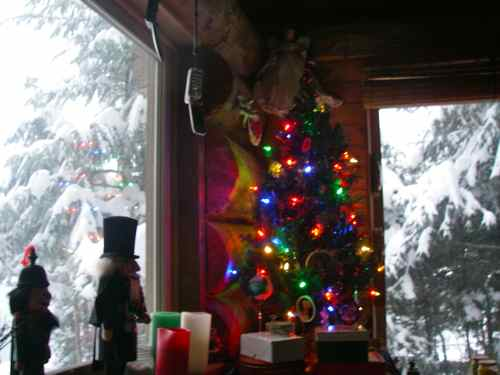 Christmas on the homestead (Photo: Michelle L. Zeiger).