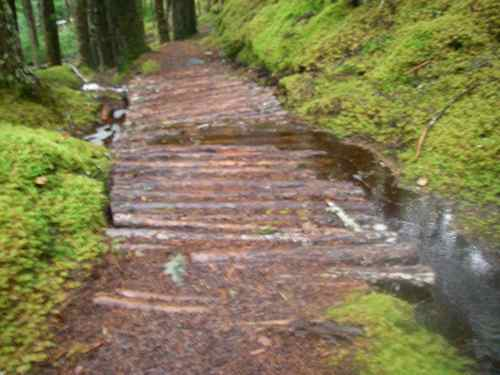 The trail's riprap overwhelmed by runoff (Photo: Michelle L. Zeiger).