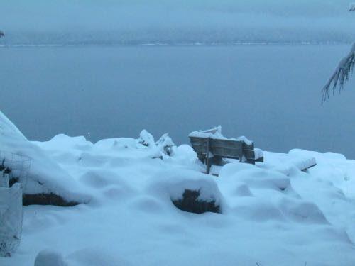 Fresh snow on the Homestead (Photo: Mark A. Zeiger).