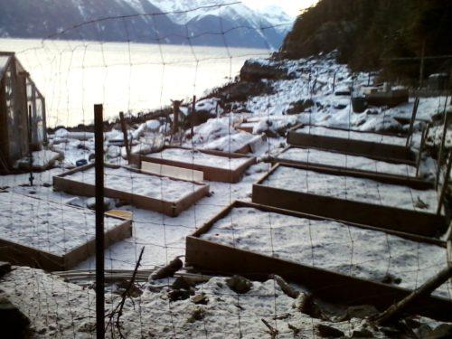Zeiger family homestead garden in winter