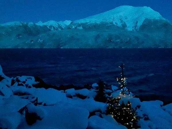 snowy beach, Christmas tree