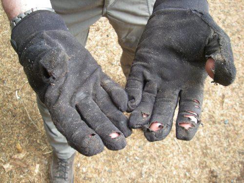 worn out work gloves