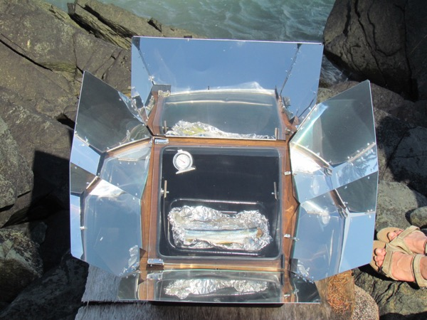 baking fish in a solar oven