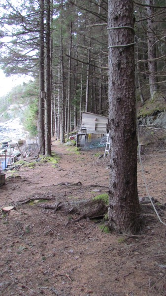 Social isolation, homestead style